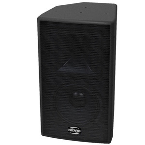 "[KS-152P]<BR>15"" 2-Way <BR>Active Network Speaker"